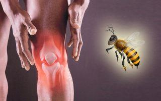 Мази с пчелиным ядом для суставов