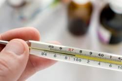 Повышение температуры при гнойном бурсите