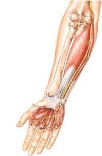 Остеохондроз локтевого сустава его причины и симптомы лечение -