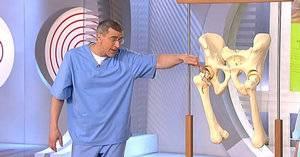 Болезни суставов и особенности строения тазобедренных суставов