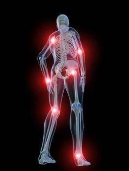 для суставов терафлекс отзывы