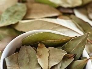 Мазь для суставов из лаврового листа