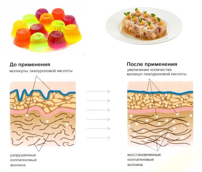 Коллаген для суставов в продуктах из желатина
