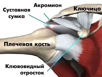 боль в плече во время спортивных тренировок