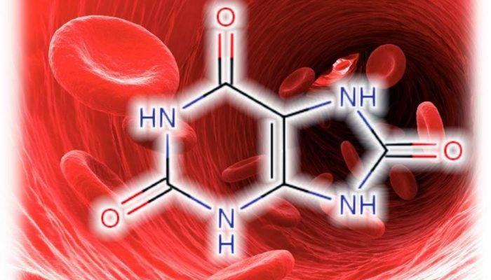 Мочевая кислота в крови повышена лечение народными средствами