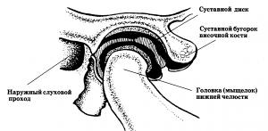 Височно нижнечелюстной сустав анатомия воспаление симптомы лечение