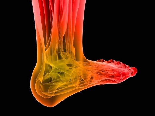 Голеностоп - множество суставов, связок и мышц